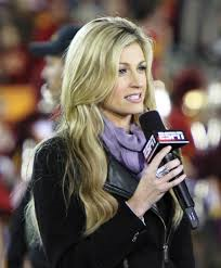 Erin Andrews, Sports Commentator